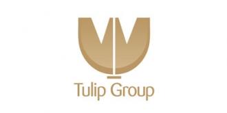 郁金香集团 Tulip Group