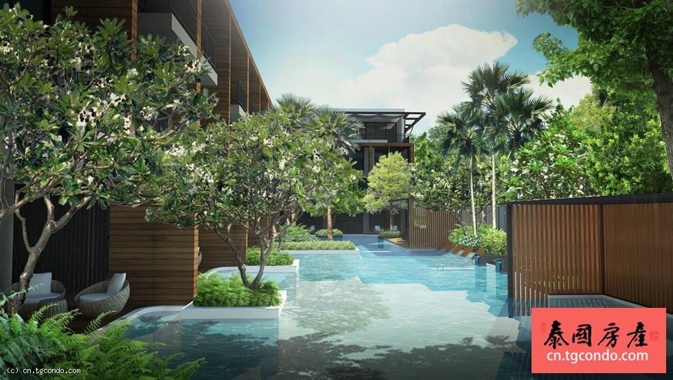 包租20年!年8%租金回报!泰国清迈最新投资型楼盘预售