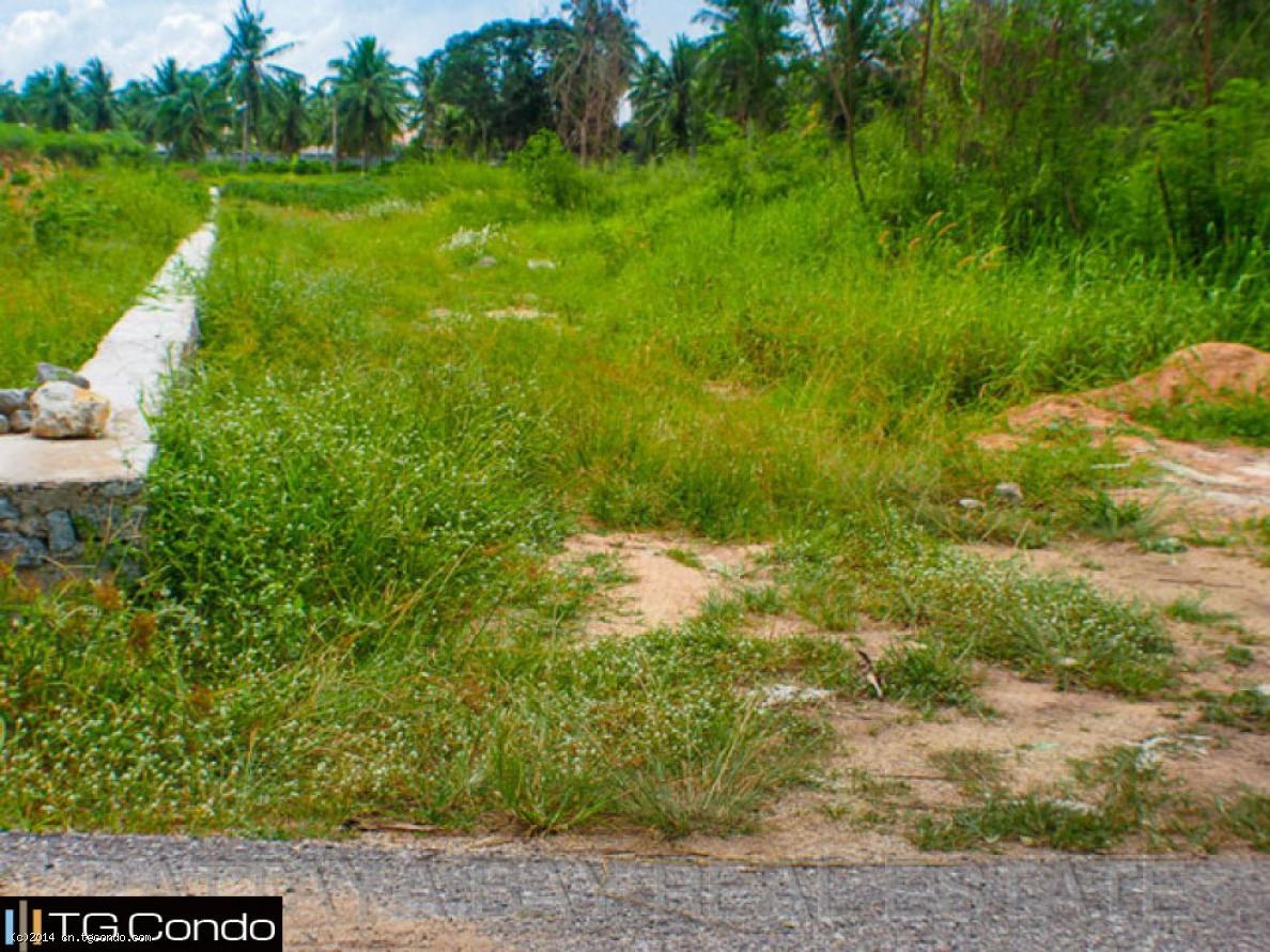 泰国芭提雅土地出售市区