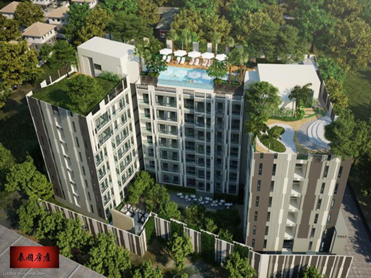 芭提雅商业区36平米1卧公寓Chezz