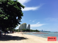 泰国芭堤雅公寓 Zire Wongamat 一线海景 私家沙滩
