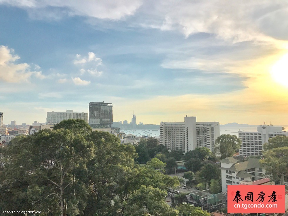 泰国芭提雅中心海公寓正面海景一室户型
