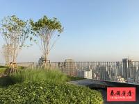 泰国曼谷Asok稀有精品2房户型,3.5米层高,超大阳台