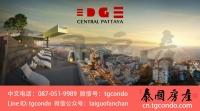Edge Central Pattaya 泰国芭提雅黄金地段公寓转售,希尔顿邻居