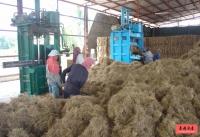 泰国商业地产:棕榈丝公司厂房出售