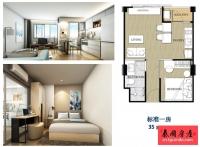 自住投资型公寓,泰国曼谷沙吞区一房一厅出售