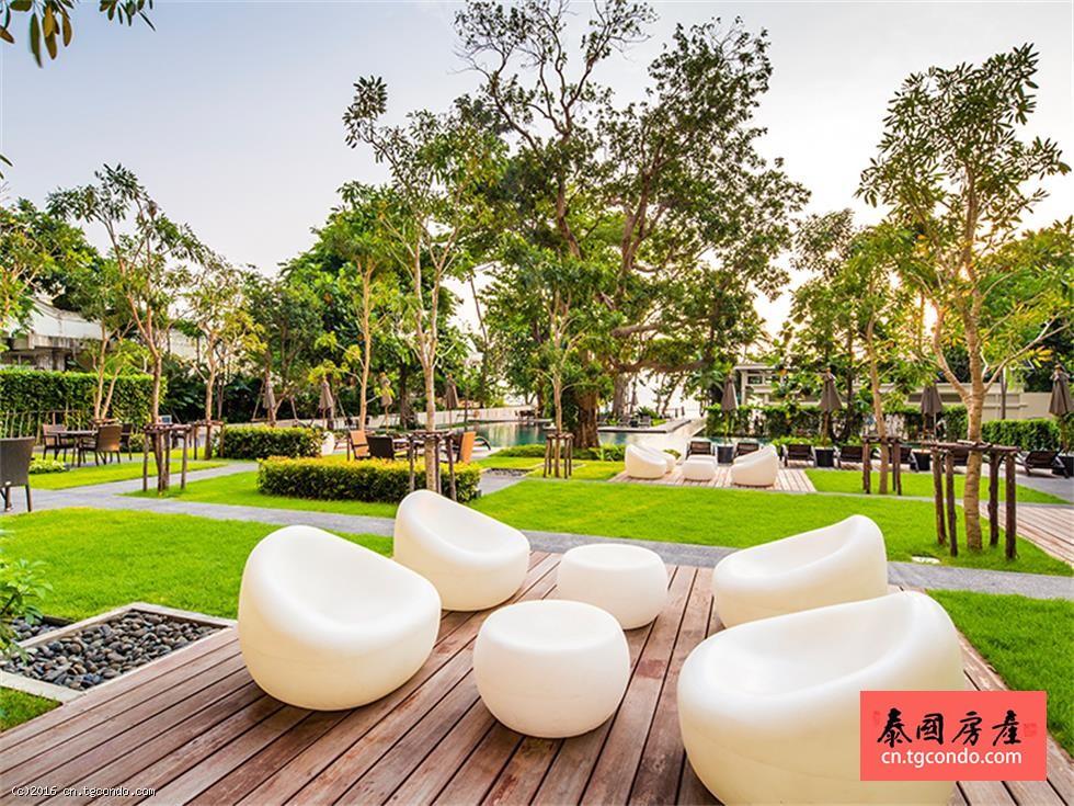 泰国芭提雅富人区,Zire两房公寓出租,无敌海景