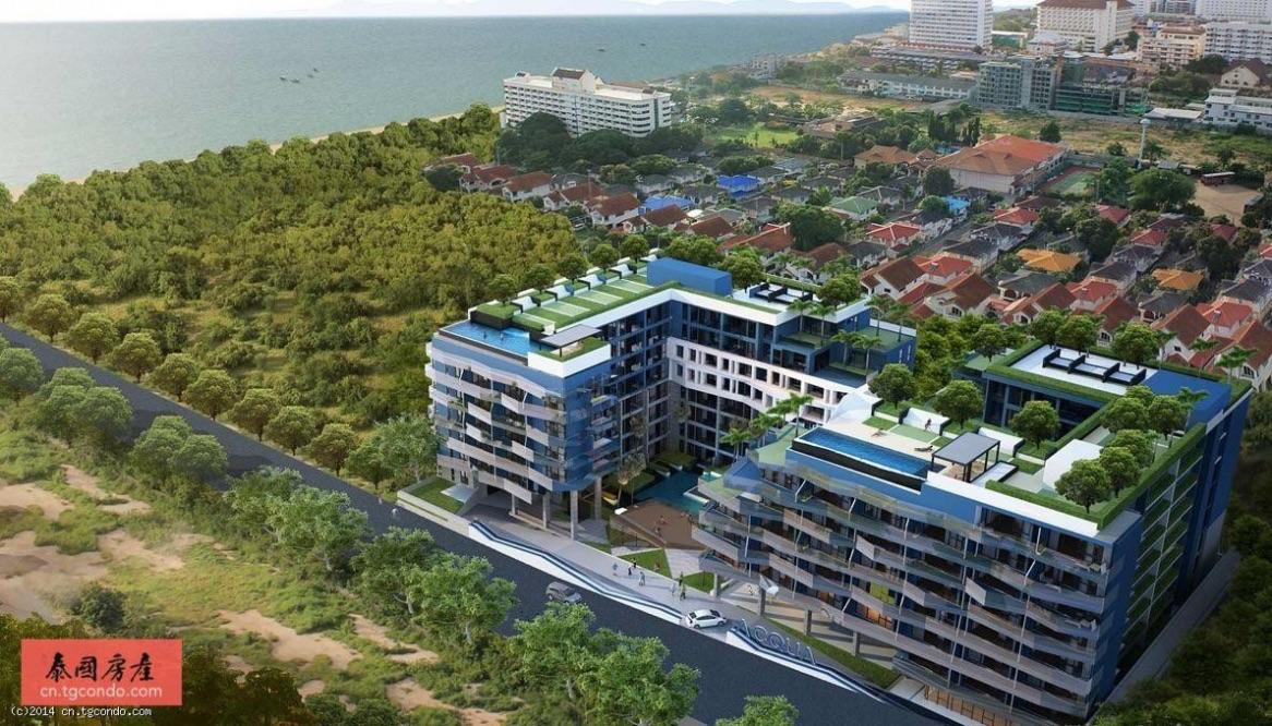 泰国芭堤雅中天水象公寓